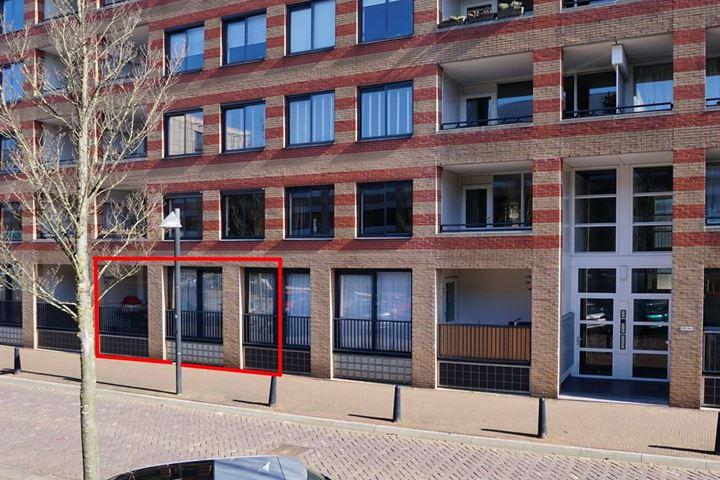 Arthur van Schendelstraat 543