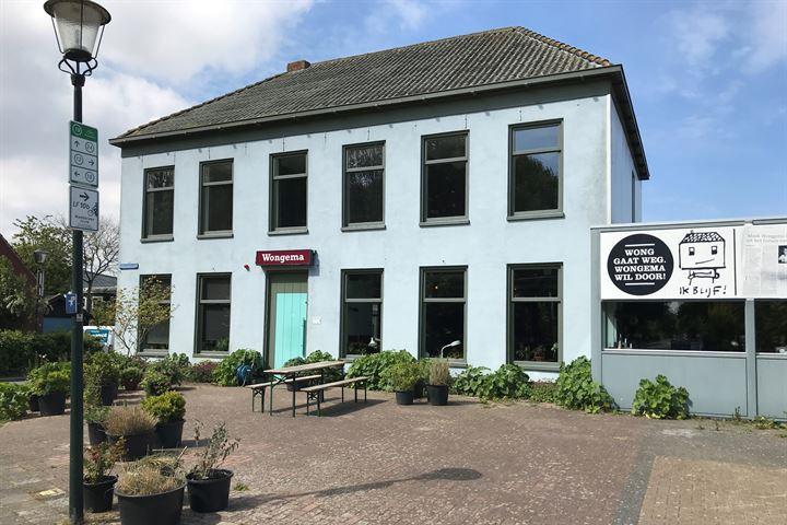 Tammingastraat 58, Hornhuizen