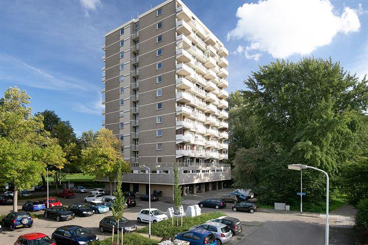 Johan Willem Frisostraat 63