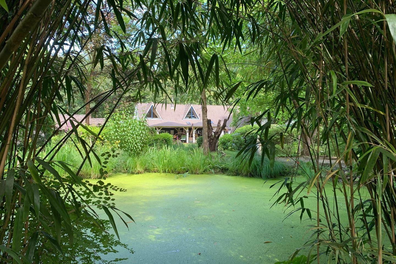 Bekijk foto 4 van Holthesedijk 10
