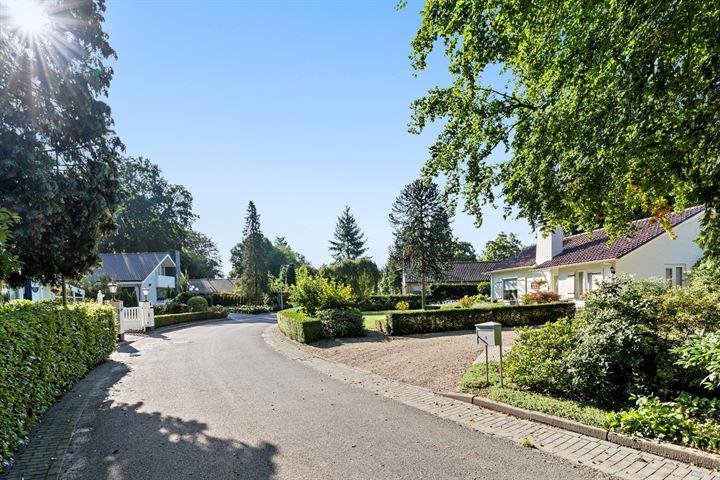 Hugo de Vriespark 6
