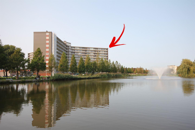 Bekijk foto 1 van Vrijheer van Eslaan 499