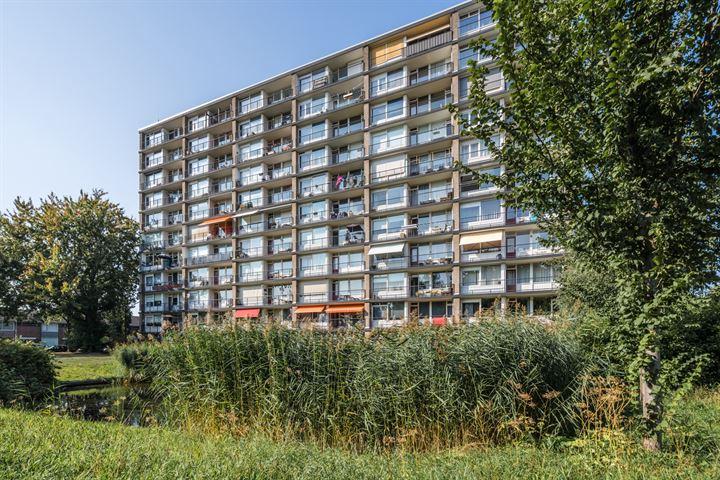Antwerpenstraat 38