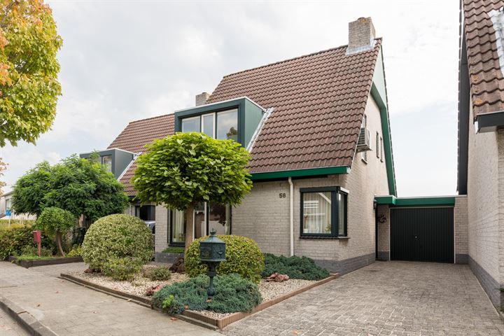 Fluwijnberg 56