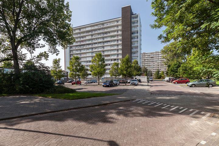 Louis Raemaekersstraat 255