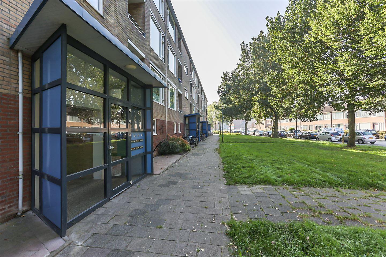 Bekijk foto 4 van Dierenriemstraat 65