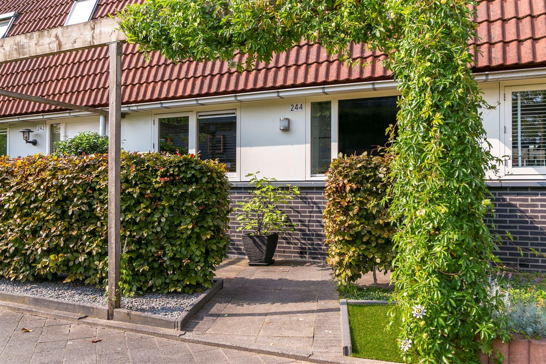Bekijk foto 4 van Klifrakplantsoen 244