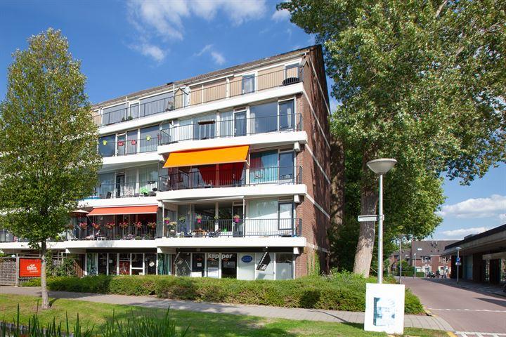 Ruigenburg 43