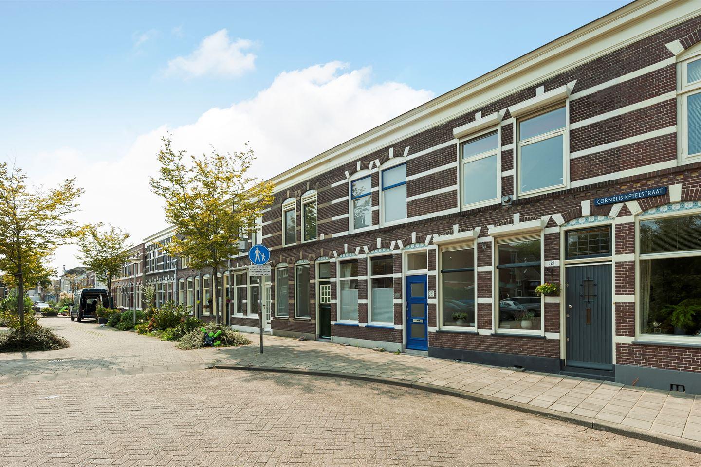 Bekijk foto 1 van Cornelis Ketelstraat 59