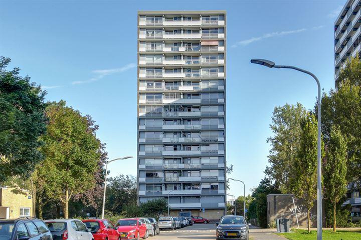 Waddenstraat 469