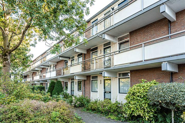 Jaap Buijshof 72