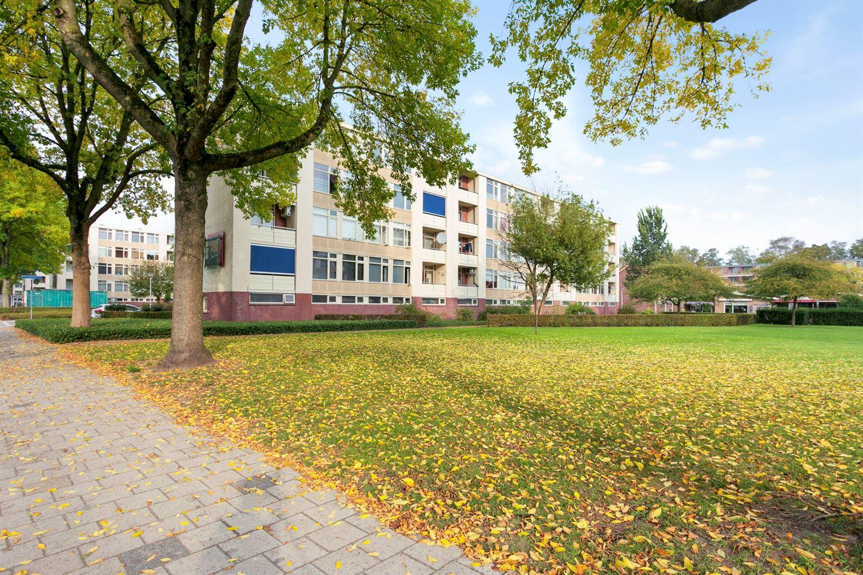 Bekijk foto 3 van Pieter de Hoochstraat 58