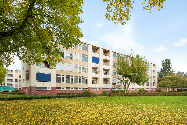 Bekijk foto 4 van Pieter de Hoochstraat 58