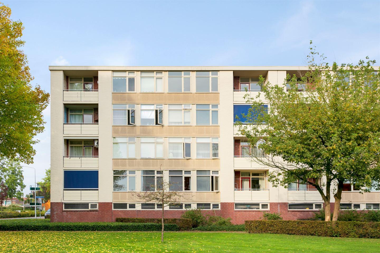 Bekijk foto 2 van Pieter de Hoochstraat 58