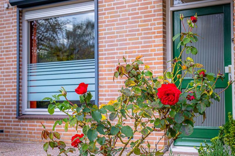 Bekijk foto 3 van Weijbroekweg 16