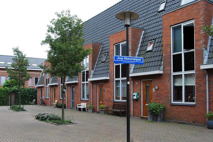 Joop Moesmanpad 8