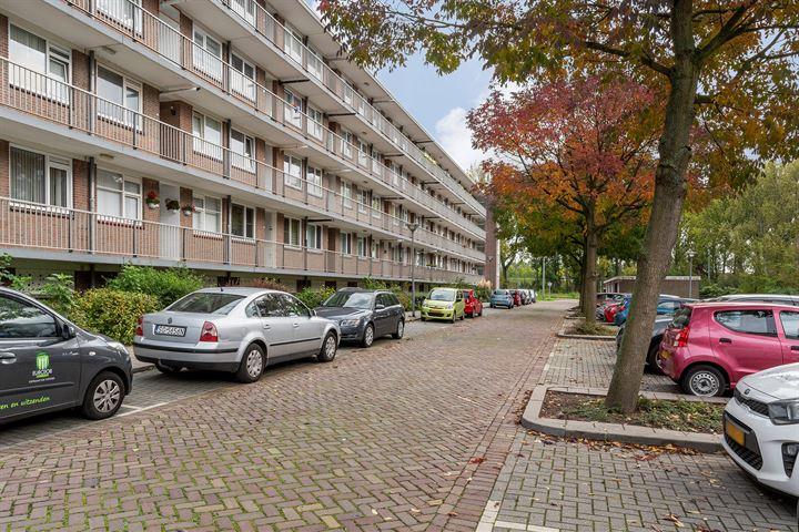 van Hoornbeekstraat 13 A