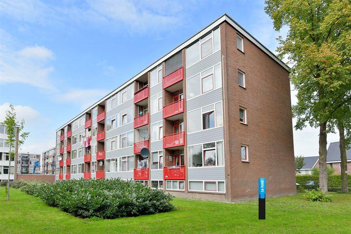Maasstraat 430