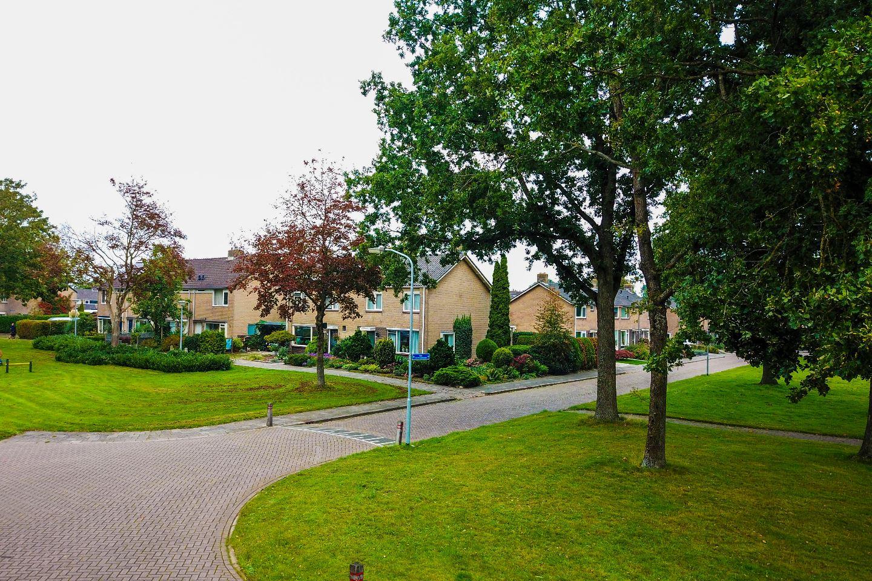 Bekijk foto 3 van Drostlaan 1