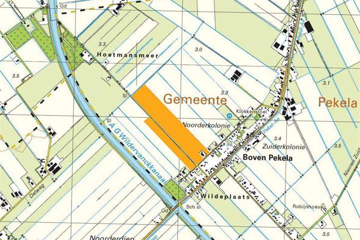 Noordercolonie, Nieuwe Pekela