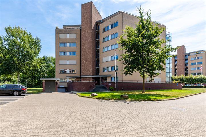 Hofdael 132