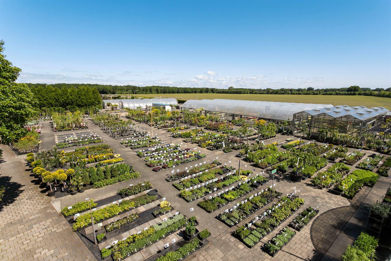 View photo 3 of Willibrordusweg 6