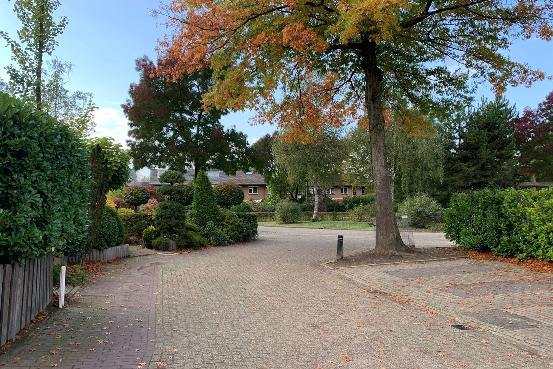 Bekijk foto 3 van Nieuwenpolder 53
