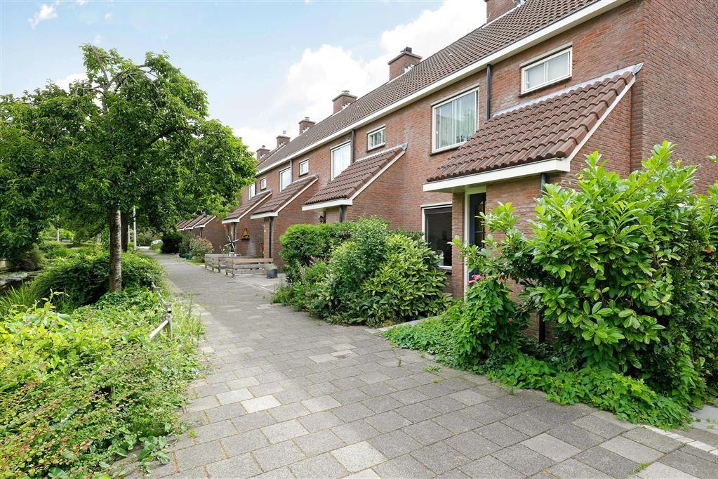 Bekijk foto 4 van Willem Elsschotsingel 49