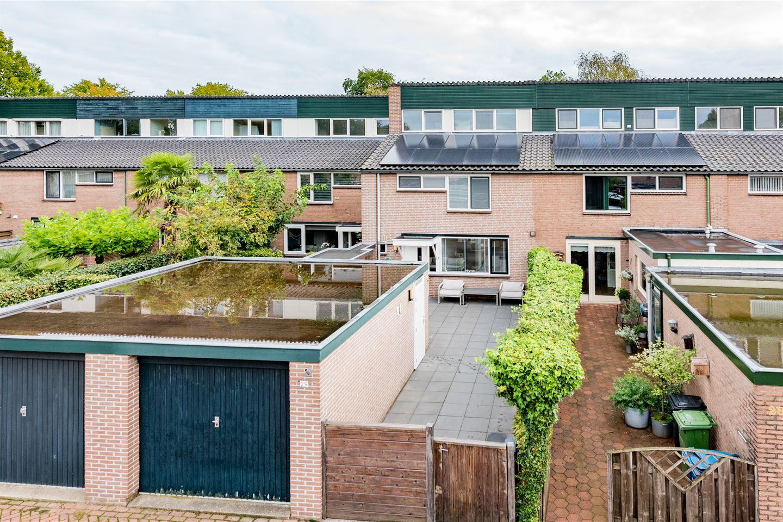 Bekijk foto 3 van Doornenburg 29