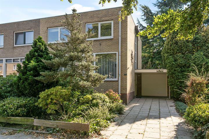 Meijhorst 9243