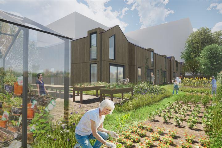 Harvest - Tiny House