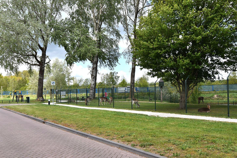 Bekijk foto 4 van Hooglandswyk 57