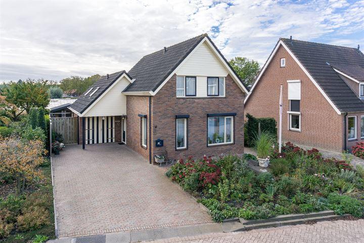 De Haag 8
