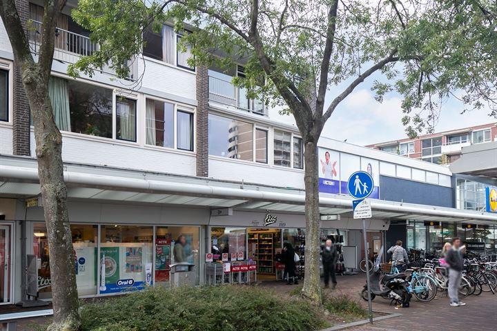 Alphons Diepenbrockhof 50