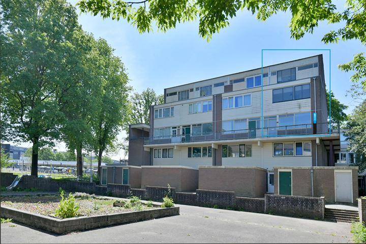 Doornenburg 830