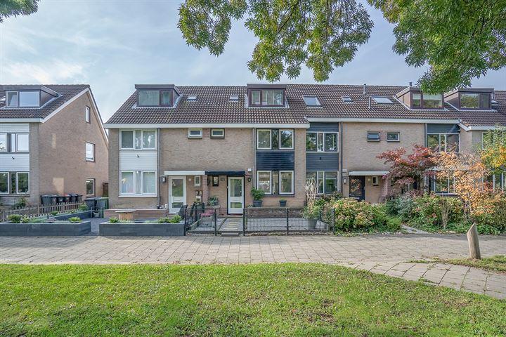 van Limburg Stirumplantsoen 12