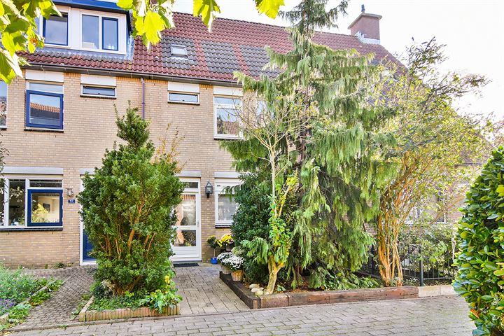 Willemsbos 61