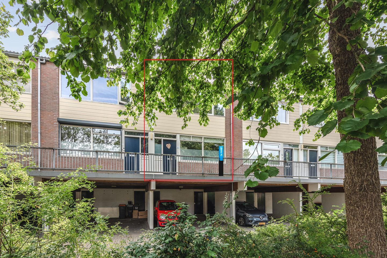 Bekijk foto 1 van Doornenburg 817