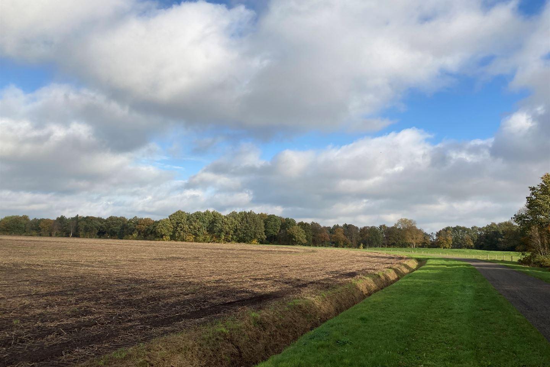 Bekijk foto 4 van Hoornse Bulten