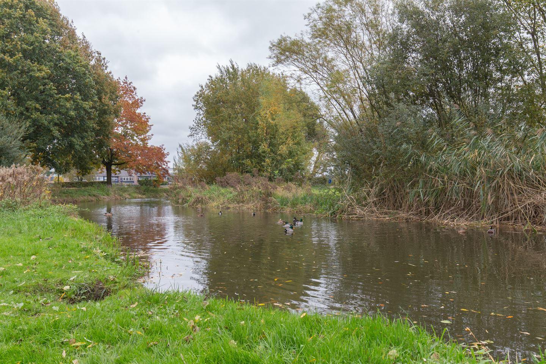 Bekijk foto 2 van Doornenburg 81