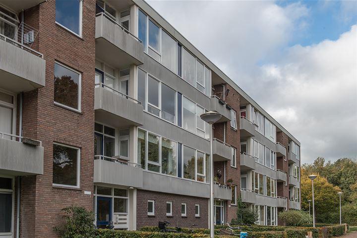 Ruusbroecstraat 159