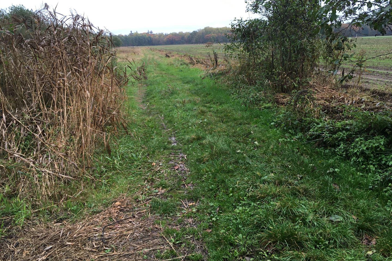 Bekijk foto 3 van Smalzij/Oude Grintweg