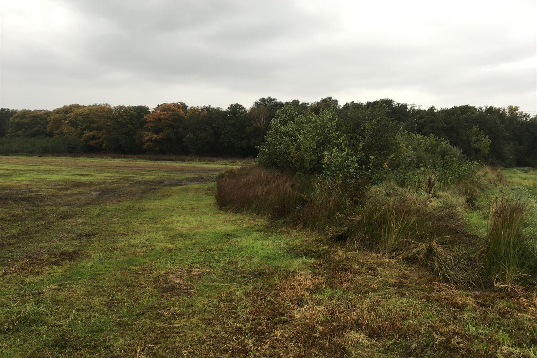 Bekijk foto 3 van Tregelaar/Oude Grintweg