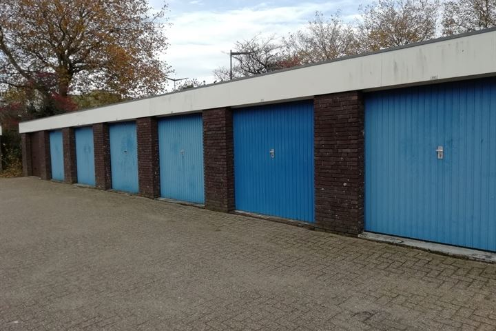 Texelhof 231