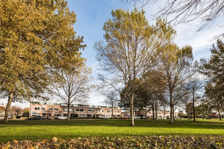 Bekijk foto 1 van Ebenezer Howardpark 24