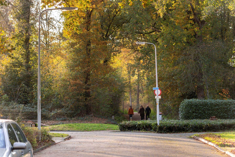 Bekijk foto 4 van Coornhertstraat 63
