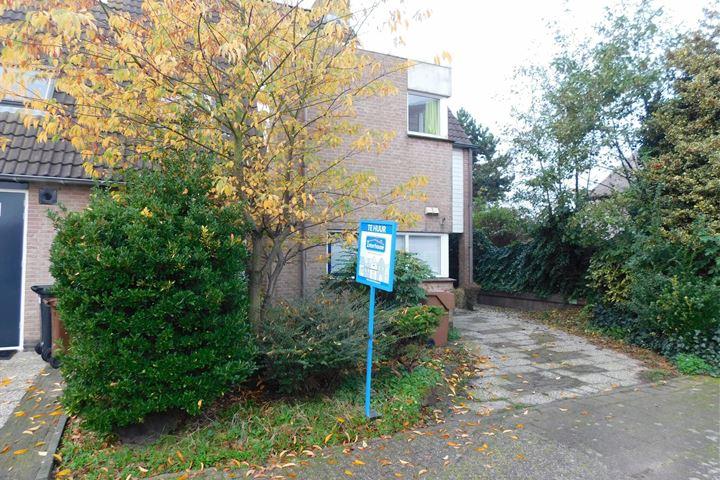 Westerhout 45