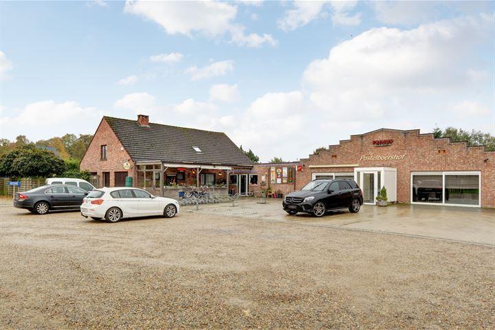De Postelboer Arendonk (België), Reusel