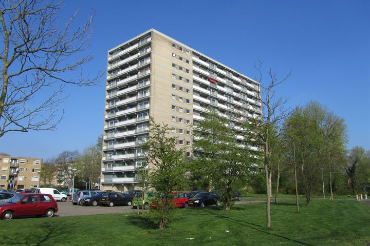 Waddenstraat 633