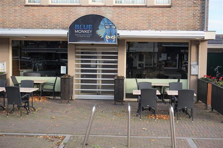 Nieuwstraat 9 A, Son en Breugel